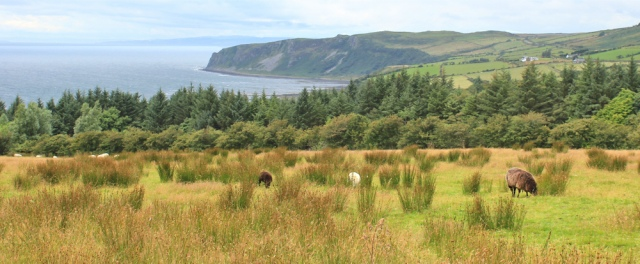 29 Bennan Head, Ruth hiking Arran Coastal Way, Scotland