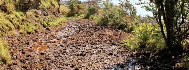 13 muddy track to sea, Ruth hiking the Arran Coastal Way