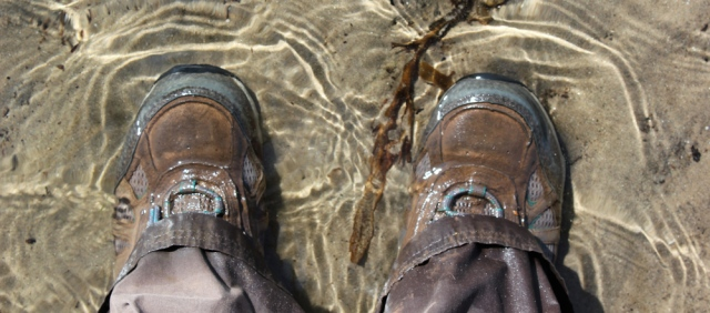 20 paddling in the sea, Ruth walking the Arran coastal way, Scotland