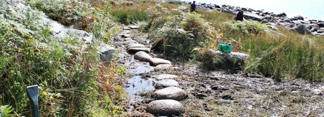 29 mud and stepping stones, Ruth hiking the Arran Coastl Way