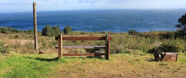 21 logging spot, Merkland Wood, Ruth Livingstone on the Isle of Arran