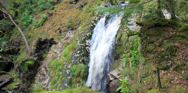 25 waterfall, Merkland Woods, Ruth Livingstone on Arran