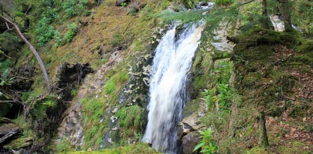 25 waterfall, Merkland Woods, Ruth Livingstone on Arran