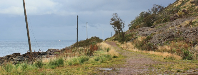 37 logging track, Ruth hiking the Arran coast path