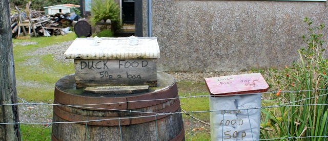 46 duck food 50p a bag, Ruth Livingstone on Arran
