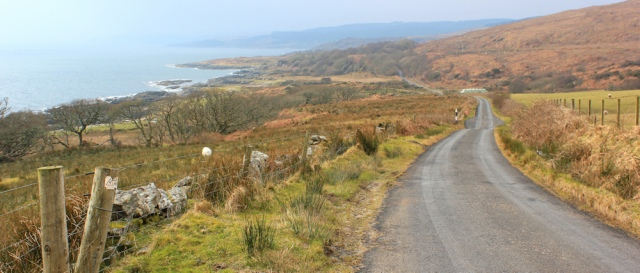 07 scenic road to Carradale, Ruth's coastal walk, Kintyre