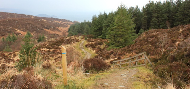 14 Ruth hiking through Tarbert Forest, Scotland