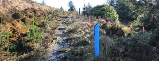 27 path up hill, Ruth's coastal walk, Carradale