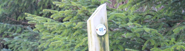 32 45 marker sign, Ruth on the Kintyre Way