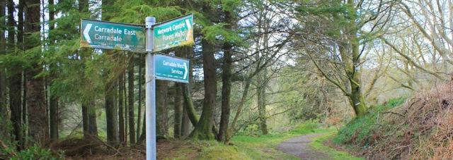 05 footpaths around Carradale, Ruth's coastal walk, Kintyre, Scotland