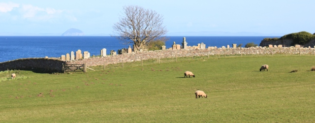 36 Church and sheep, Ruth's coastal walk, Kintyre, Scotland