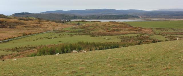 03 view over West Loch, Tarbert, Ruth's coastal walk around Kintyre, Scotland