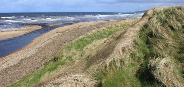 06 dunes, Machrihanish Bay, Ruth hiking the Mull of Kintyre