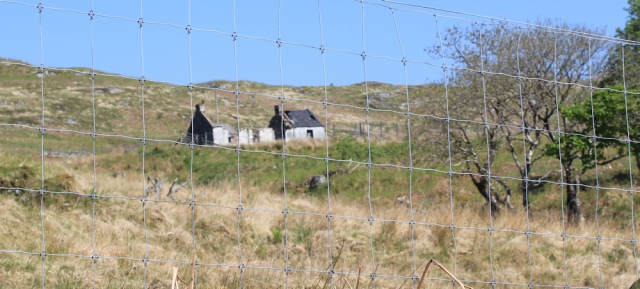 08 deer fences and ruined cottages, Ruth Livingstone