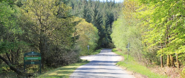 10 Achaglachgach forest, Ruth's coastal walk, Argyll, Scotland