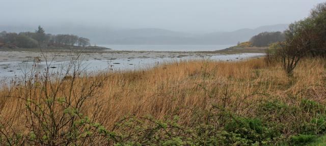 11 misty views, road to Tarbert, Ruth's coastal walk around Kintyre, Scotland