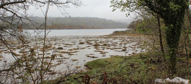 14 west loch, Tarbert, Ruth's coastal walk around Scotland