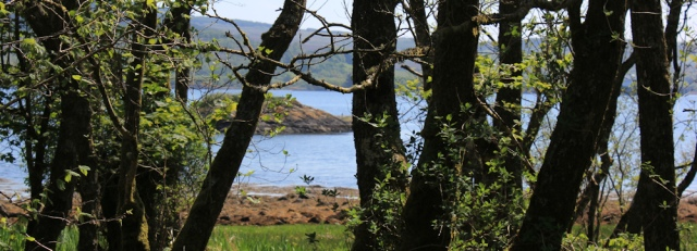 16 West Loch Tarbert, Ruth's coastal walk, Argyll, Scotland