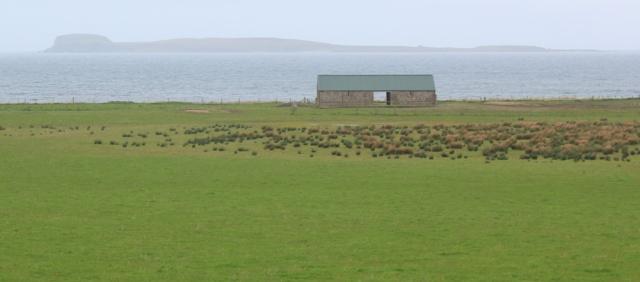 17 Cara island, Ruth's coastal walk, Kintyre, Scotland