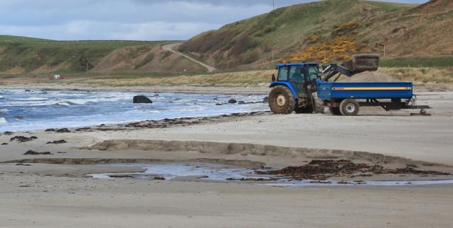 22 excavating sand, Bellochantuy beach, Ruth's coastal walk