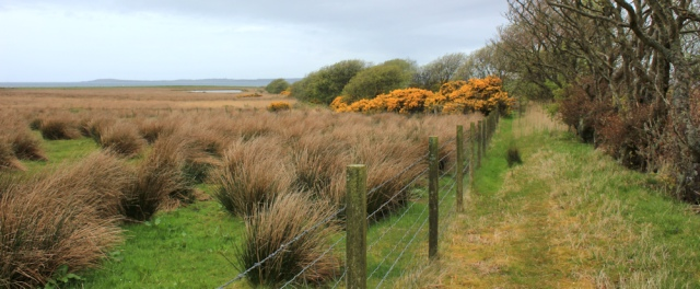 22 Kintyre Way to Tayinloan, Ruth's coastal walk around Scotland