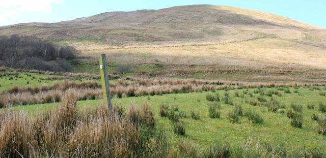 23 Amod Hill, Ruth's coastal walk, Mull of Kintyre