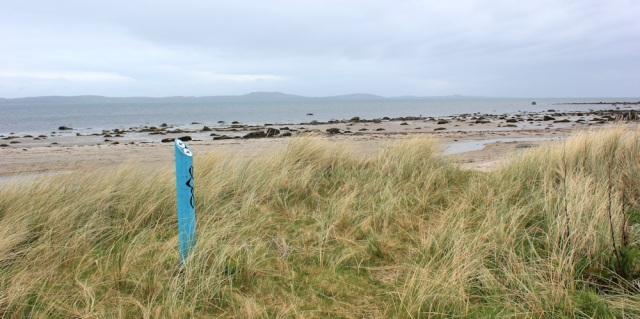 24 Gigha Island, Ruth's coastal walk, Kintyre, Scotland