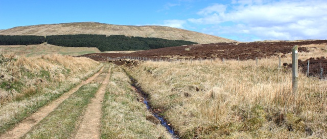 33 track through Largiebaan, Ruth hiking the Mull of Kintyre