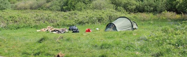 04 more camping, Ruth's coastal walk, Argyll, Scotland