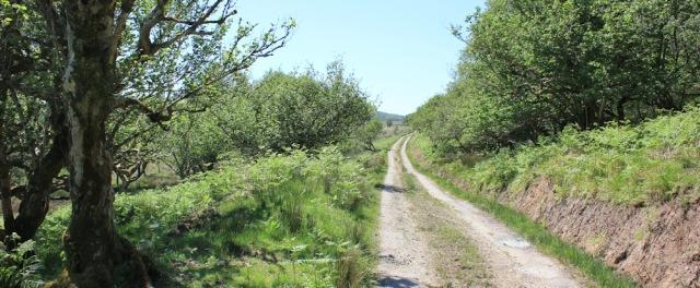 05 track down from Ellary estate, Ruth's coastal walk, Argyll, Scotland