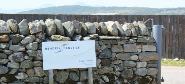 11 Hendrix Genetics fishfarm, Ormsary, Ruth's coastal walk, Argyll, Scotland