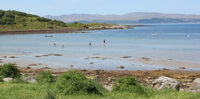 13 Carsaig Bay, Ruth's coastal walk, Argyll