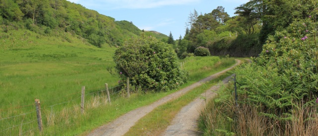 14 uphill track, Ellary Estate, Ruth's coastal walk, Argyll, Scotland