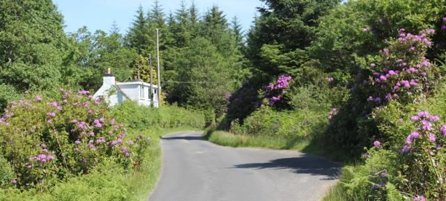 18 Daltote Cottage, Ruth's coastal walk, Knapdale, Scotland
