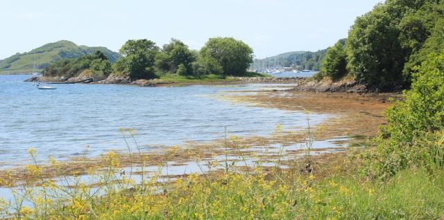 19 Eilean Traighte, Ruth's coastal walk, Scotland