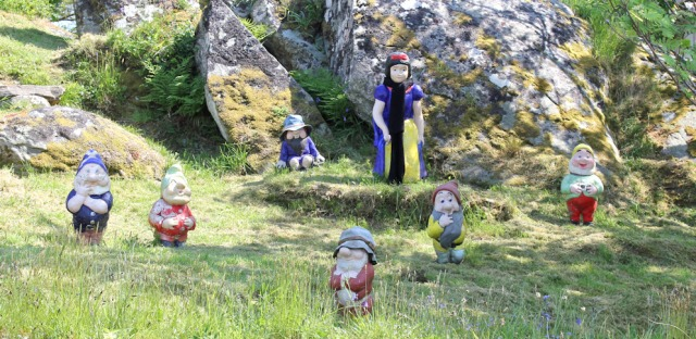 19 snow white and some dwarves, Ruth's coastal walk, Argyll, Scotland