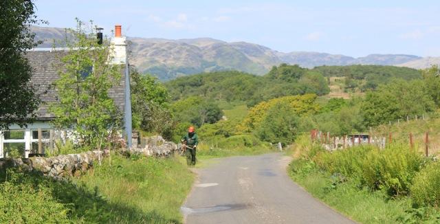 21 verge strimming, Ruth's coastal walk, Argyll, Scotland