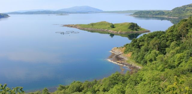 22 Loch Melfort and Eilean Coltair, Ruth's coastal walk around Scotland