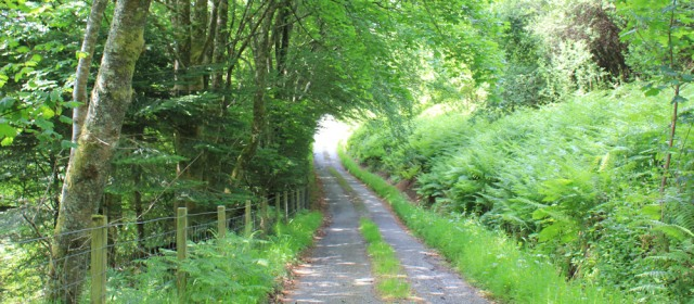 23 very quiet road, Ruth's coastal walk around Scotland, Loch Melfort