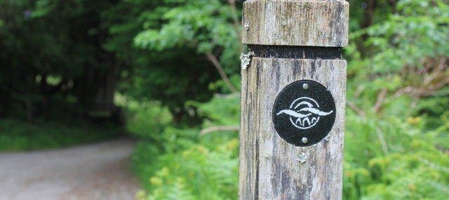 25 walk symbol, Ruth's coastal walk, Scotland