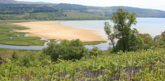 28 view across Ceann Loch Caolisport, Ruth's coastal walk, Argyll, Scotland
