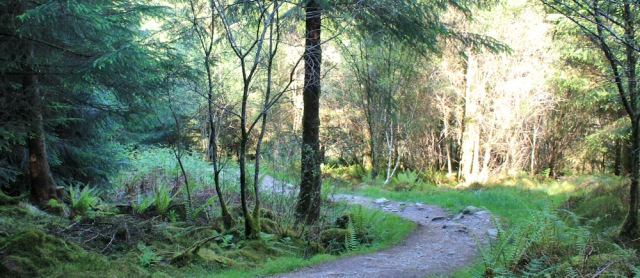 29 path down to shore, Crinan, Ruth's coastal walk, Argyll