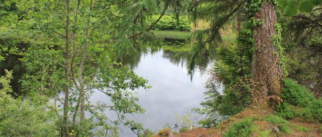 35 lochan Eilean, Ruth hiking Black Mount, near Oban