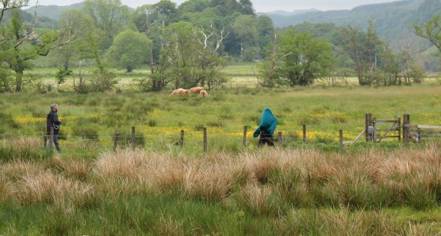 49 wrapped girl, Kilmartin, Ruth's coastal walk, Scotland