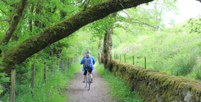 51 cycle track to Carnasserie Castle, Ruth's coastal walk, Scotland