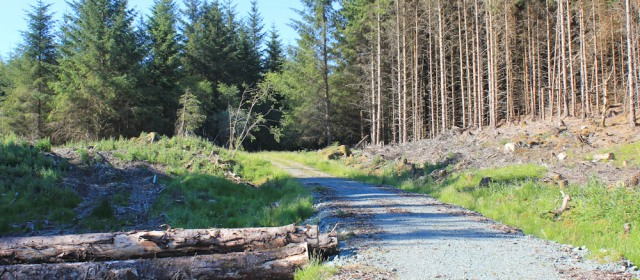 57 forestry track, Ardnoe and Faery Isles cycle routes, Ruth Livingstone