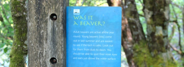60 sign about beavers, Ruth walking the coast of Argyll, Scotland