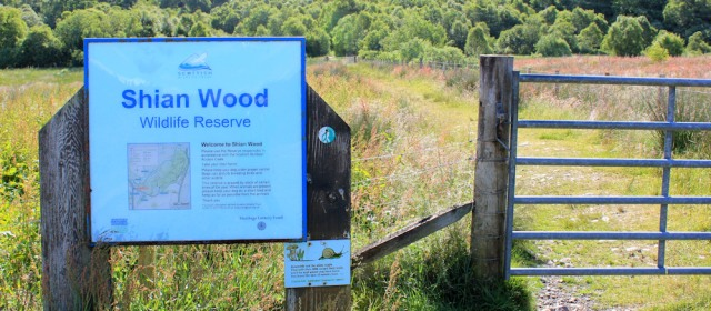 21 Shian Wood wildlife reserve, Ruth's coastal walkaround Scotland