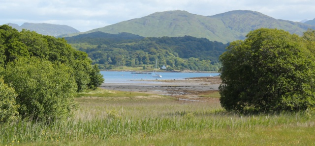 22 view over Loch Creran, Ruth's coastal walkaround Scotland