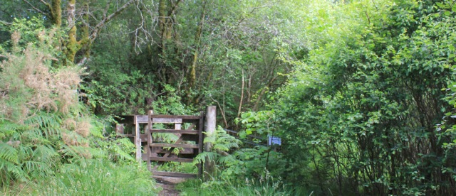 23 woodland walk, Ruth's coastal walkaround Scotland
